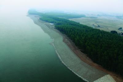 唐山南湖自然原型护岸